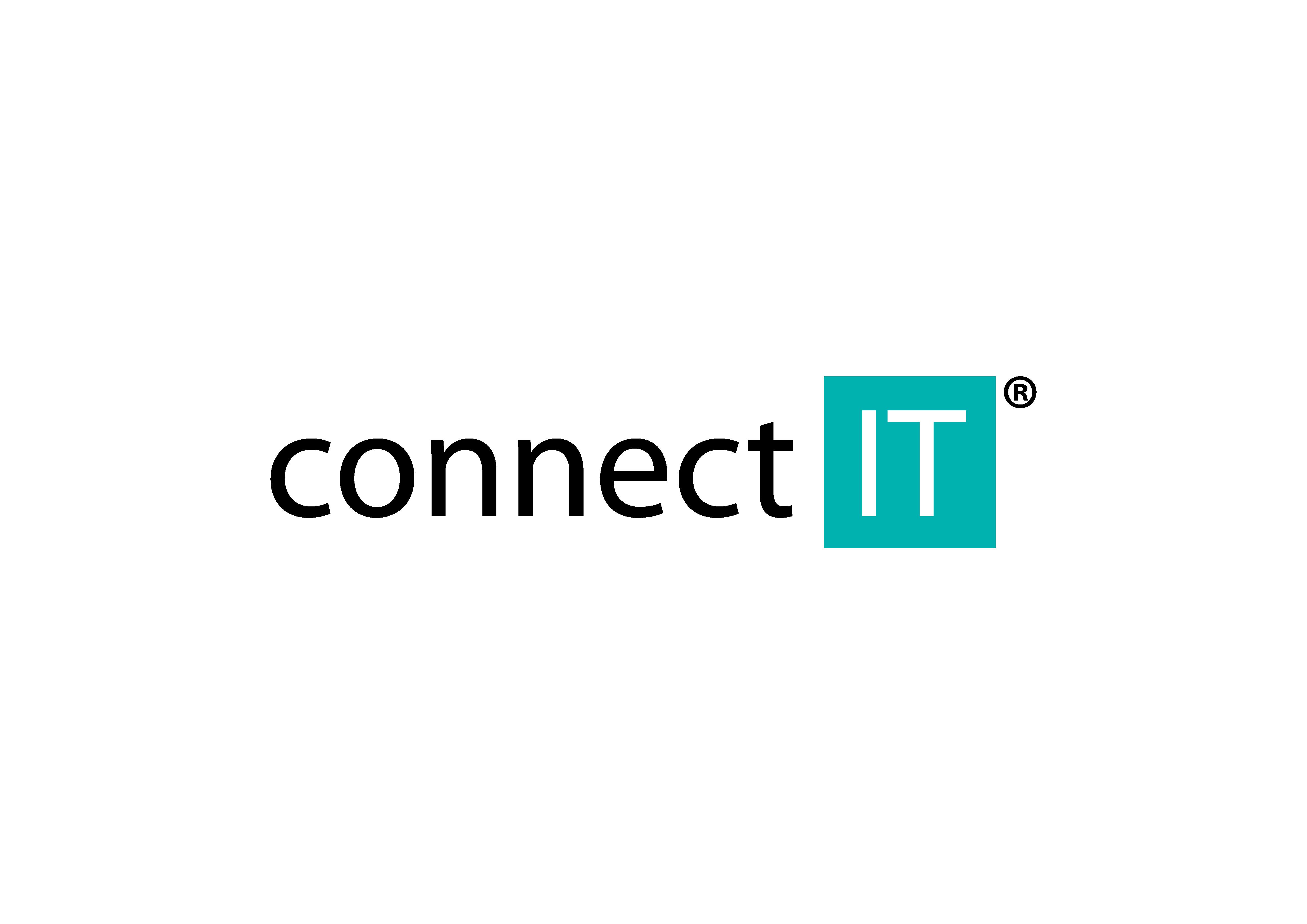 Logo společnosti Connect IT